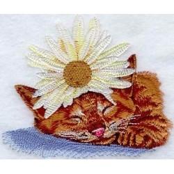 kotě s květinou