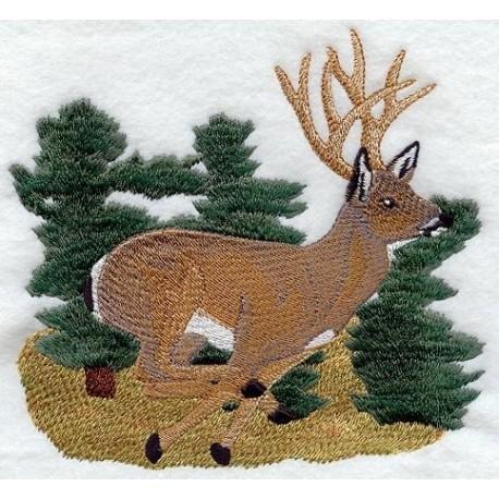 běžící kříženec jelena