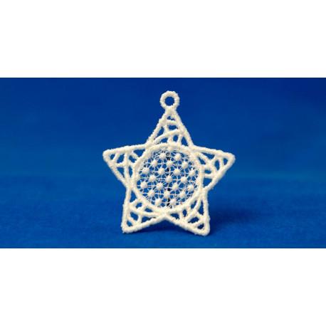 Hvězda malá-5