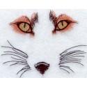oči lišky