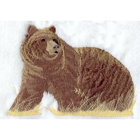 medvěd grizly