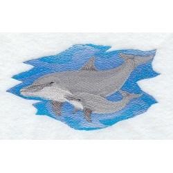delfín s mládětem
