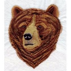 medvěd grizly-hlava