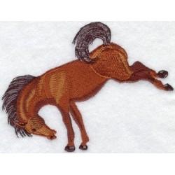 divoký kůň vyskakující