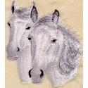 Connemarský kůň