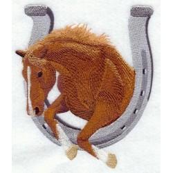 kůň a podkova