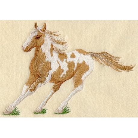 kůň v trysku