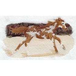 skvrnitý kůň v běhu