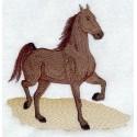 americký jezdecký kůň Saddlebred