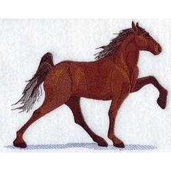 kůň tennesseeský mimochodník