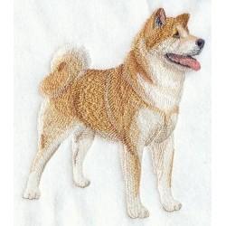 japonský pes Akita