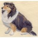Staroanglický ovčák