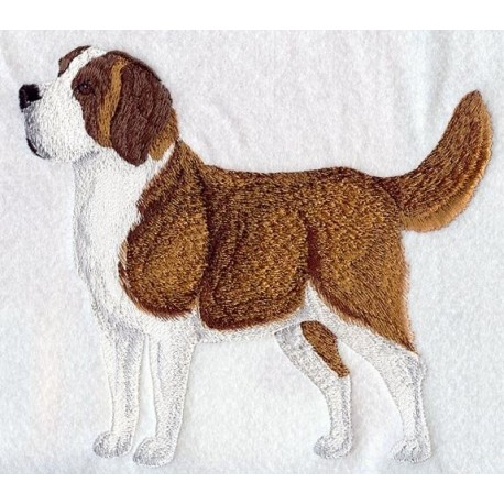 Svatobernarský pes, bernardýn