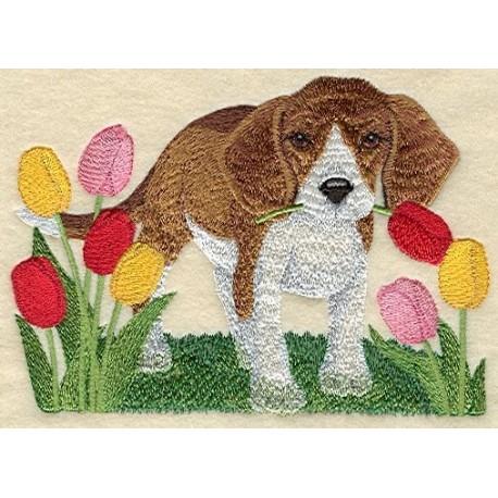 štěně v tulipánech