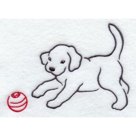 štěně a míč