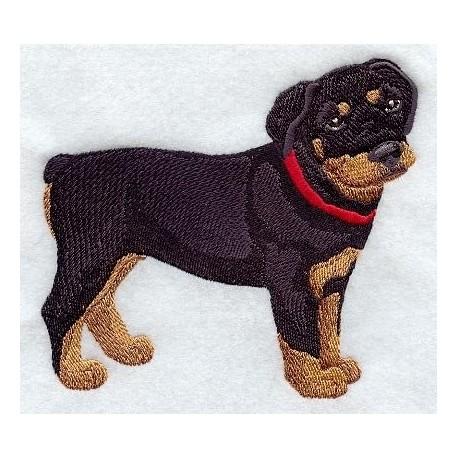 štěně rottweilera