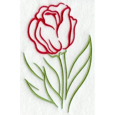 tulipán - obrys