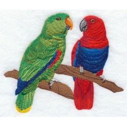 párek papoušků