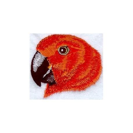 hlava papouška