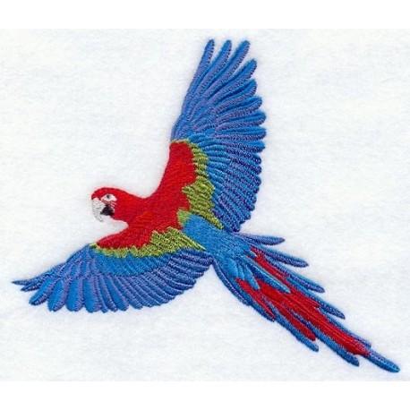 papoušek ara v letu