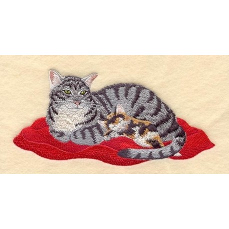 kočka s kotětem