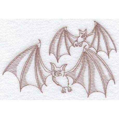 netopýr