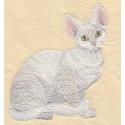 kočka Devon Rex