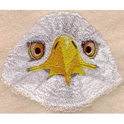 výraz orla