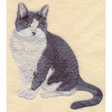 kočka Gracie