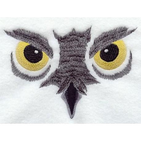 sova-noční pohled