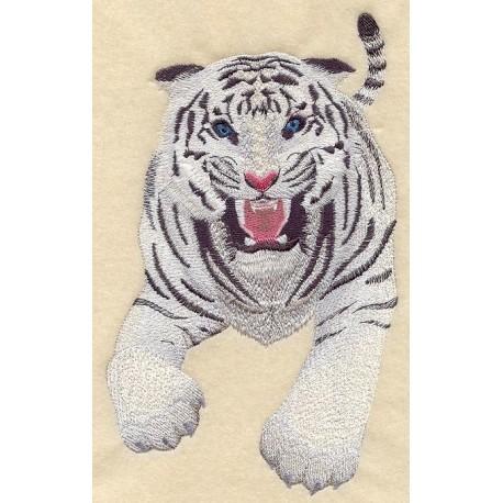 tygr v útoku -bílý i klasické zbarvení
