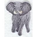 africký slon