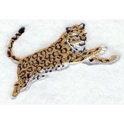 leopard ve skoku