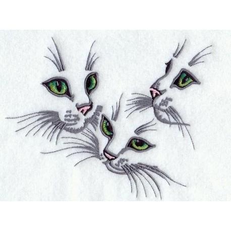 kočičí trio-obrys