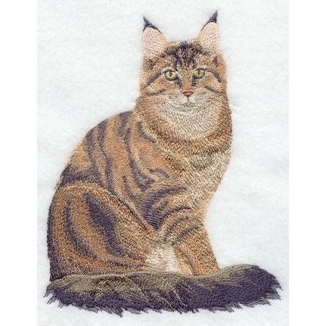 angorská kočka