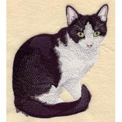 kočka Trixie
